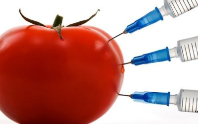 Avoiding Toxins in Food